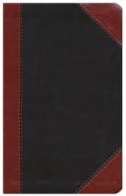 Biblia Ultrafina Café Clásica (Imitación Piel )