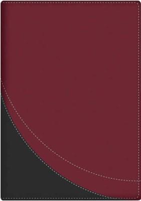 La Biblia en Orden Cronológico - RVR60 (Imitación Piel Rojo)