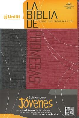 Biblia de Promesas: Edición Juvenil (Imitación Piel Duotono Gris-Rojo)