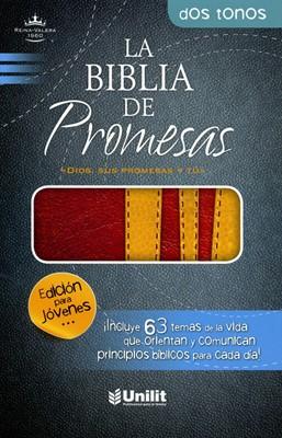 Biblia de Promesas - Edición Jóvenes (Imitación Piel Duotono Marrón - Amarillo)