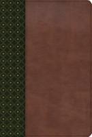 Biblia de Estudio Scofield Símil Piel Verde Oscuro - Castaño